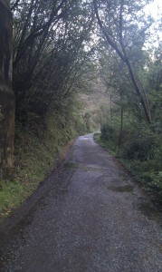 Carretera Belelle