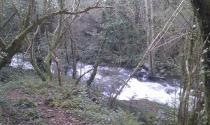 rio belelle