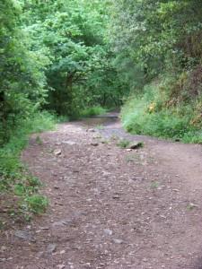 Camino de Toxa
